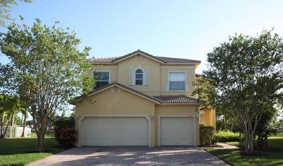 Fort Pierce Single Family Home For Sale: 5829 Sunberry Circle