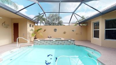 Port Saint Lucie Single Family Home For Sale: 859 SW Saint Tropez Court