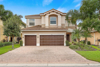 Boynton Beach Single Family Home For Sale: 8481 Serena Creek Avenue