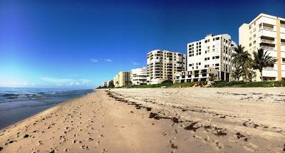 Highland Beach Rental For Rent: 3115 S Ocean Boulevard #301