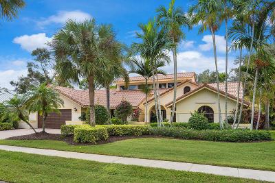 Boca Raton Single Family Home For Sale: 1201 SW 19th Avenue