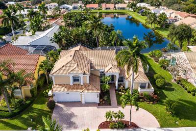 Palm Beach Gardens Single Family Home For Sale: 10221 Allamanda Boulevard