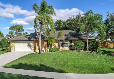Royal Palm Beach Single Family Home Contingent: 226 Cordoba Circle