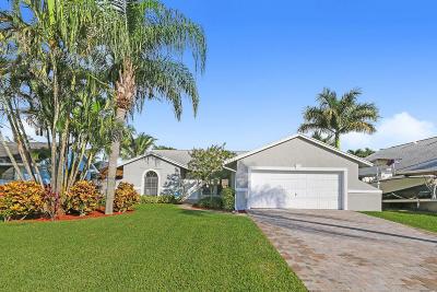 Jupiter Single Family Home For Sale: 6071 Robinson Street