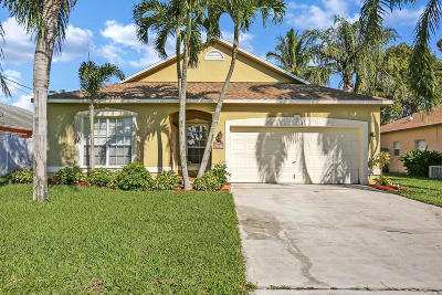 Jupiter Single Family Home For Sale: 6321 Lauderdale Street