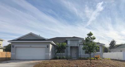 Port Saint Lucie Single Family Home For Sale: 1066 SW Eckard Avenue