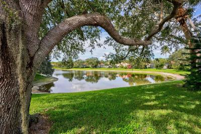 Palm Beach Gardens Single Family Home For Sale: 173 Lost Bridge Drive