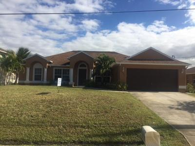 Port Saint Lucie Single Family Home For Sale: 4221 SW Hagaplan Street