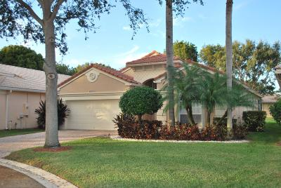 Boynton Beach Single Family Home For Sale: 7947 Lando Avenue