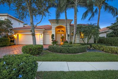 Delray Beach Single Family Home For Sale: 16361 Braeburn Ridge Trail