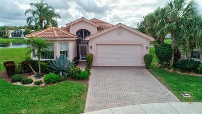 Delray Beach Single Family Home For Sale: 6429 Punta Rosa Drive