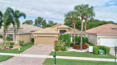 Lake Worth Single Family Home For Sale: 8751 Via Avellino