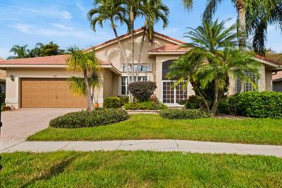 Boynton Beach Single Family Home For Sale: 7080 Falls Road E