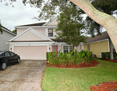 Palm City Single Family Home For Sale: 3094 SW Solitaire Palm Drive