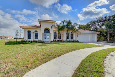 Boynton Beach Single Family Home For Sale: 9762 Captiva Circle
