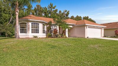 Port Saint Lucie, Saint Lucie West Single Family Home For Sale: 5214 NW Edgarton Terrace