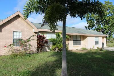 Port Saint Lucie Single Family Home For Sale: 234 SW Bridgeport Drive