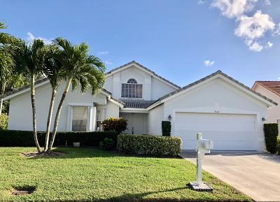 Greenacres Single Family Home For Sale: 2543 Egret Lake Drive