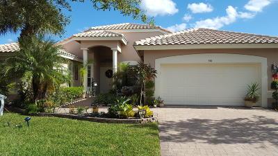 Port Saint Lucie, Saint Lucie West Single Family Home For Sale: 386 NW Shoreview Drive