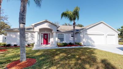 Port Saint Lucie Single Family Home For Sale: 6743 NW Mamie Court