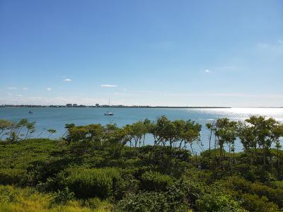 Fort Pierce Condo For Sale: 23 Harbour Isle Drive W #302