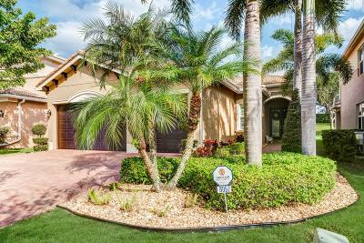 Boynton Beach Single Family Home For Sale: 8057 Emerald Winds Circle