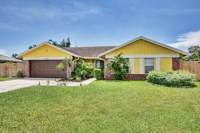Boynton Beach Single Family Home For Sale: 508 NW 10th Court