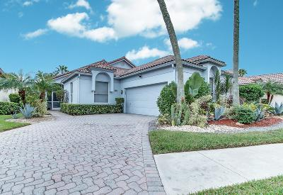 Boynton Beach Single Family Home For Sale: 6320 Evian Place