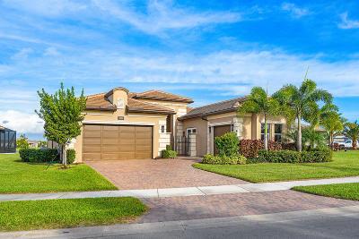 Boynton Beach Single Family Home For Sale: 12842 Big Bear