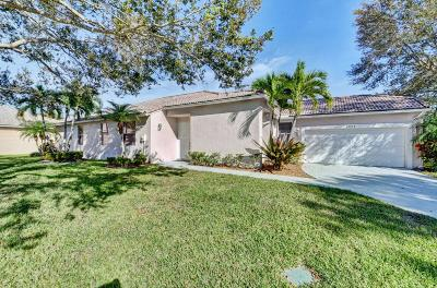 Boynton Beach Single Family Home For Sale: 10884 Fillmore Drive