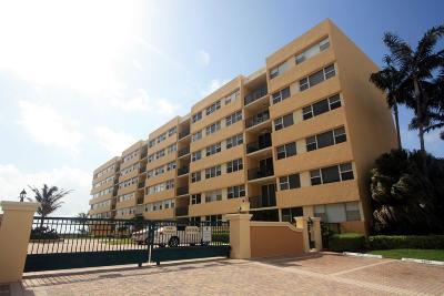 Hillsboro Beach Rental For Rent: 1237 Hillsboro Mile #401