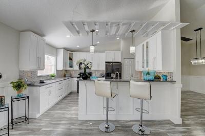 Lake Worth Single Family Home For Sale: 6352 Via Primo Street