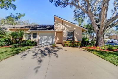 Boca Raton Single Family Home For Sale: 8585 Raintree Court