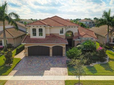 Boynton Beach Single Family Home For Sale: 8206 Alatoona Pass Way