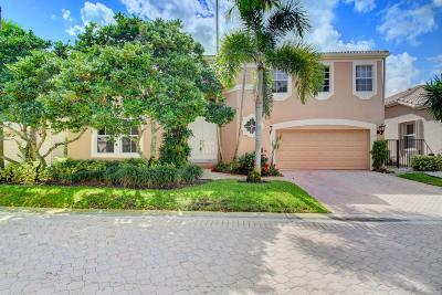 Boca Raton Single Family Home For Sale: 4278 NW 60th Drive