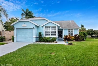 Boynton Beach Single Family Home Contingent: 30 Misty Meadow Drive