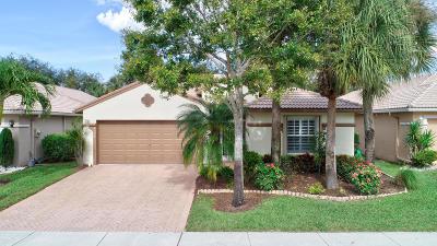 Boynton Beach Single Family Home For Sale: 8254 Duomo Circle