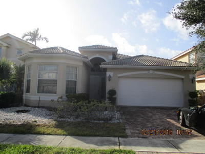 Greenacres Single Family Home For Sale: 5018 Solar Point Drive