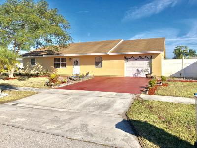Royal Palm Beach Single Family Home For Sale: 133 Granada Street