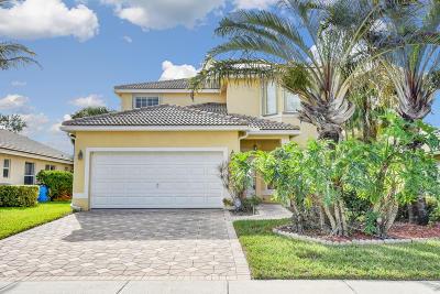 Boynton Beach Single Family Home For Sale: 8254 Palm Gate Drive