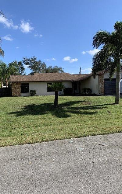 Port Saint Lucie Single Family Home For Sale: 385 NW Broadview Street
