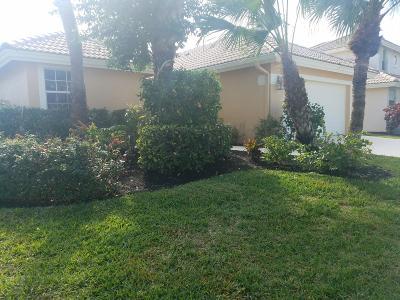 Boynton Beach Single Family Home For Sale: 50 Citrus Park Lane