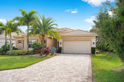 Boynton Beach Single Family Home For Sale: 9536 Dovetree Isle Drive