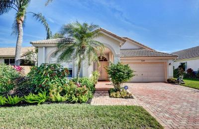 Delray Beach Single Family Home For Sale: 7649 Eagle Point Drive