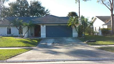 Royal Palm Beach Single Family Home For Sale: 146 Parkwood Drive