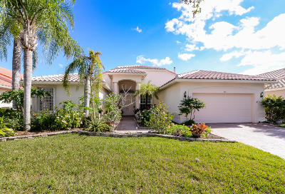 Port Saint Lucie Single Family Home For Sale: 384 NW Shoreview Drive