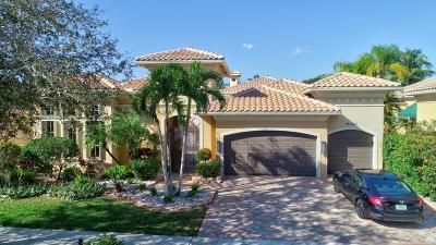Delray Beach Single Family Home For Sale: 16321 Via Venetia E