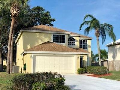 Boynton Beach Single Family Home For Sale: 6911 Dearborn Place