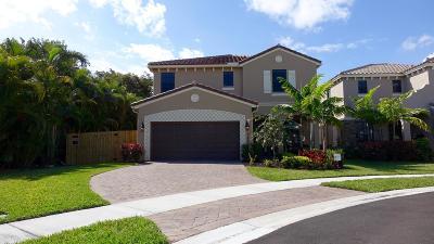 Boynton Beach Single Family Home For Sale: 3800 Aspen Leaf Drive