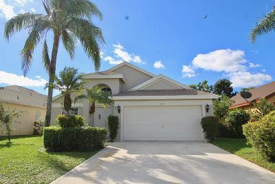 Royal Palm Beach Single Family Home For Sale: 123 Meadowlands Drive